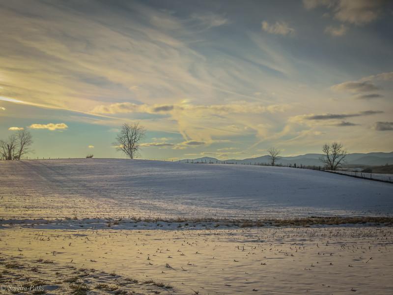 1-18-19: Snowy fields, on Centerville