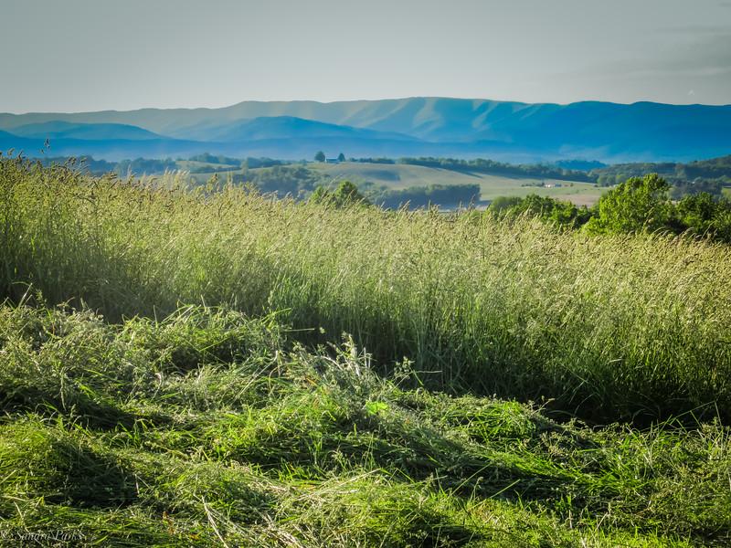 5-20-19 : Fresh hay, and Alleghenies.