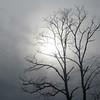 12-22-19: the winter sun