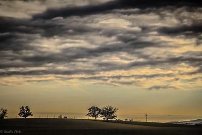 5-24-19: morning skies
