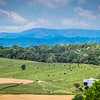 5-16-19: the view from Jordan Hill, where the cows look like ants