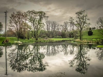 4-14-19: Spring Creek reflections