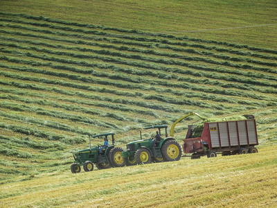 5-21-19: Making hay while the sun shines, on Mole Hill