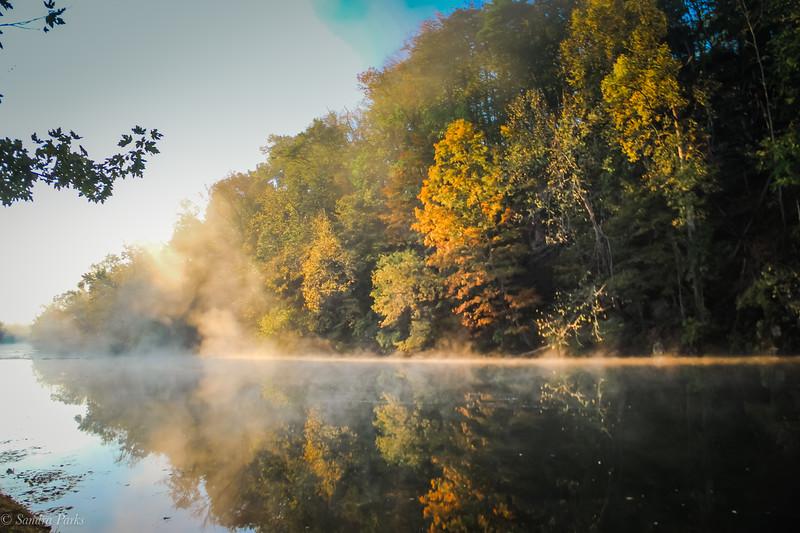 10-19-19: Fall.