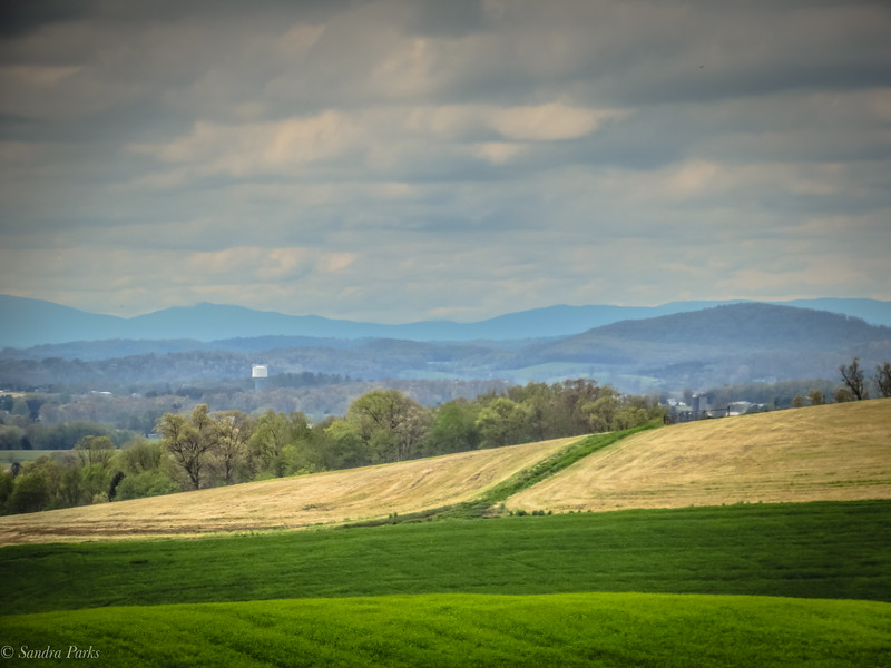 4-25-2020: Valey views, from Mole Hill