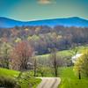 4-5-2020: Daniel Cupp Road in its springtime glory , #wheremybiketookmetoday