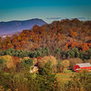 11-9-2020: fall on the Blue RIdge