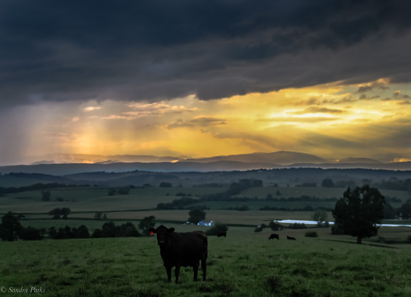8-8-2020: Stormy Evening on Centerville