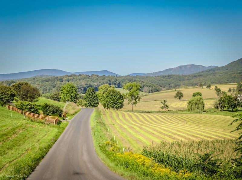 09-07-2020: New cut hay, Daniel Cupp Road
