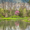 4-14-2020: Spring Creek