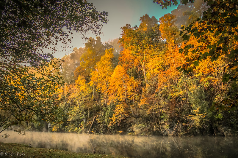 10-14-2020: DOwn by the river, when the first sunlight hits the trees