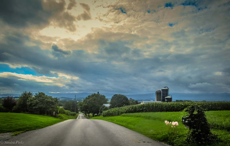 8-16-2020: The road ahead, today. It's a familiar one.