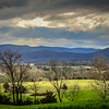 3-17-2020: A wee bit of green in the Valley.  Sometimes the Valley reminds me of Ireland