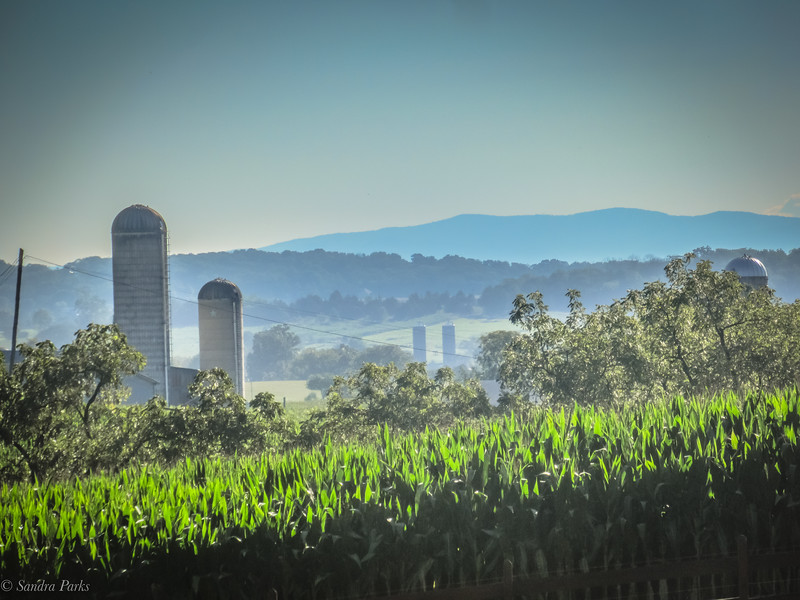 8-18-2020: COrn and Blue RIdge