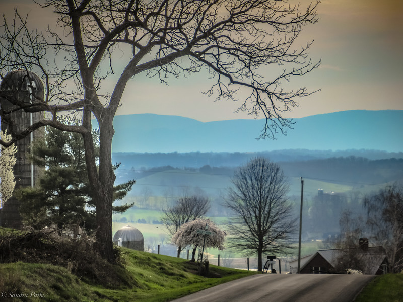 3-20-2020: Morning On Mole Hill