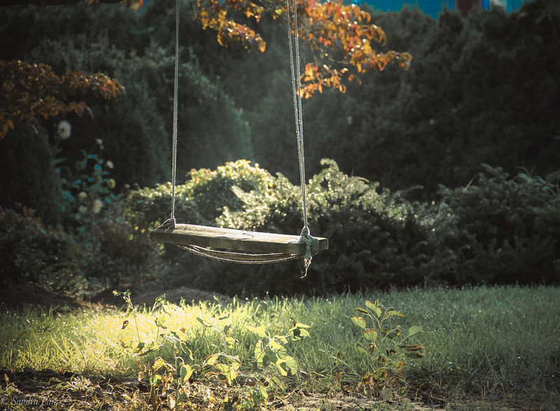 10-18-2020: Old swing