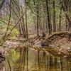 4-8-2020:  stream, Shenandoah National Park