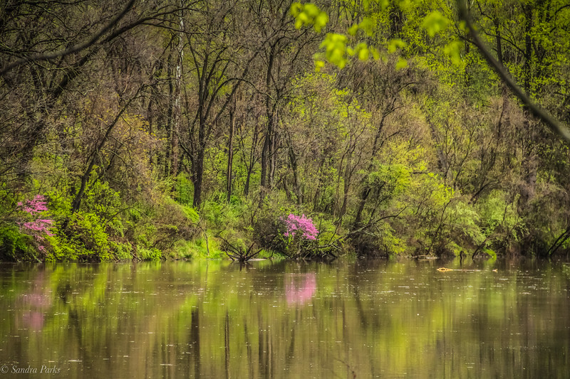 4-13-2020: North River in the morning