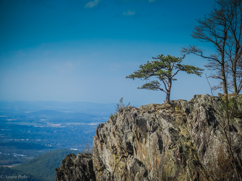 5-15-2020 : High on a mountain top