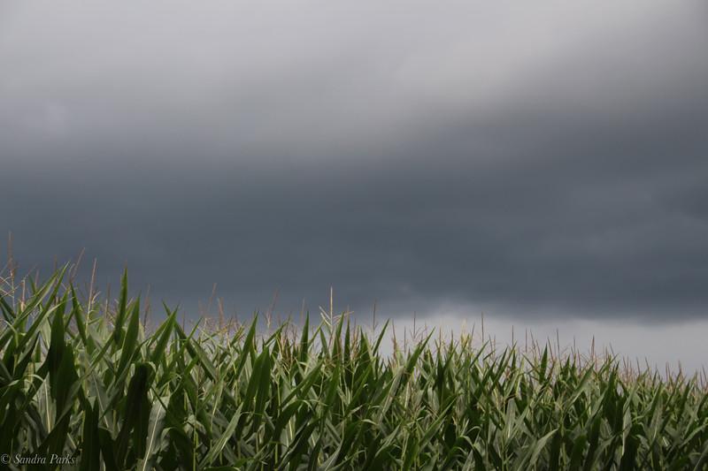 8-3-2020: Storm clouds