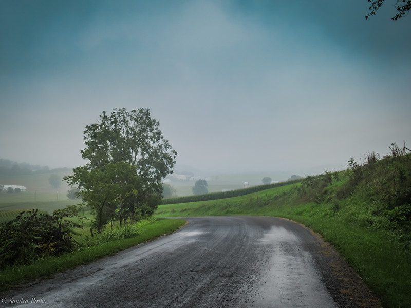 9-1-2020: Even in the fog, the road ahead can be beautiful.
