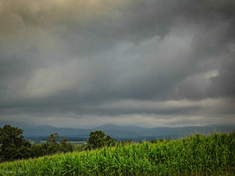 8-1-2020: Mountans and clouds