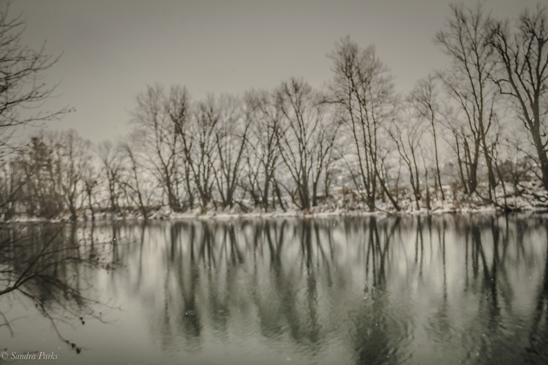 12-16-2020: Down by the river
