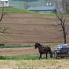 4-29-2020: Horse and buggy