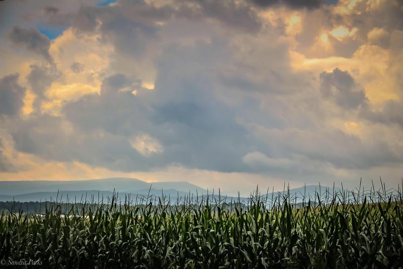 8-13-2020: Clouds ove Ottobine