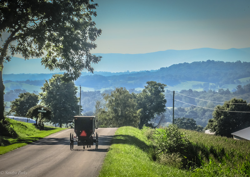 8-18-2020: Buggy on Mole Hill