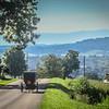 8-18-2020: Buggy on Mole Hill