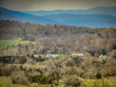 3-28-2020: Alleghenies, from Badger ROad. Trees are just starting to get furry.