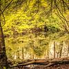 4-26-2020: Wildwood lagoon