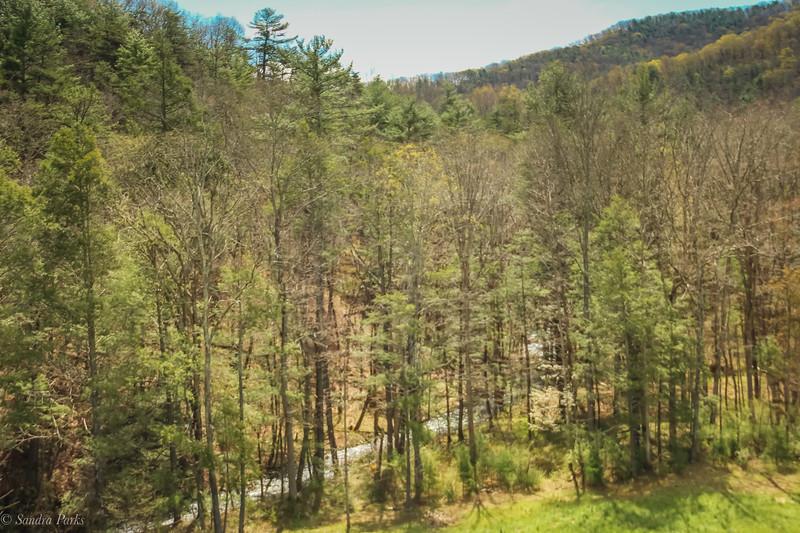 4-27-2020: mountain stream