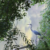 8-11-2021: Heron at Wildwood