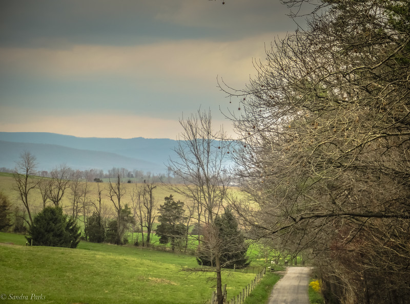 3-27-2020: THe road ahead, today. Bridgewater Road #wheremybiketookmetoday