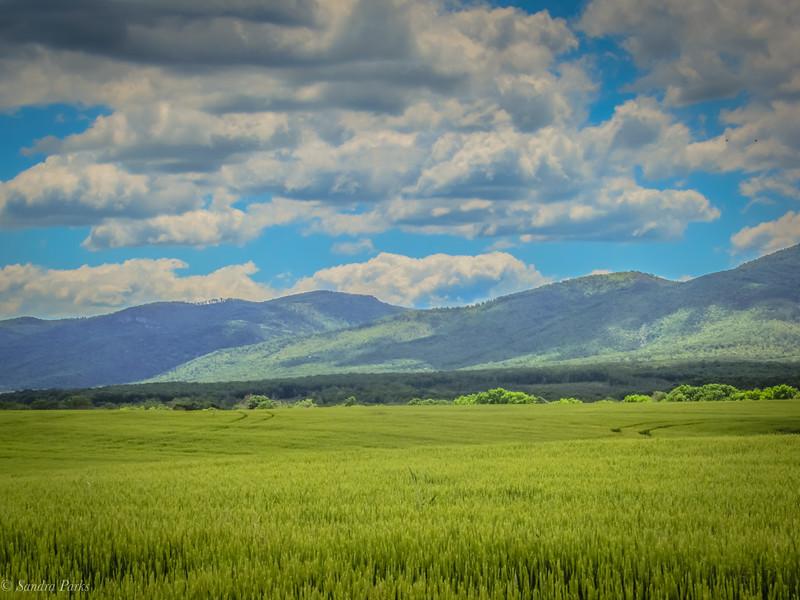 5-31-2020: The Blue Ridge Mountains, today.