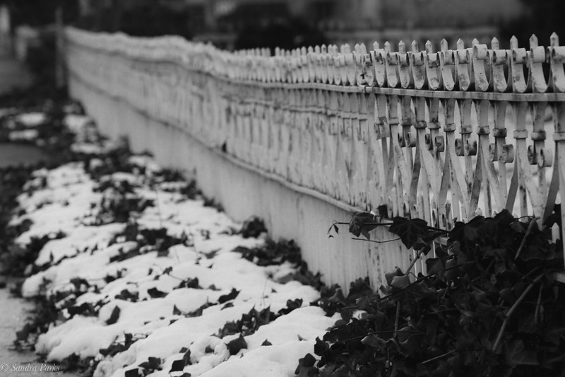 1-8-2020: wrought iron fence. Main Street