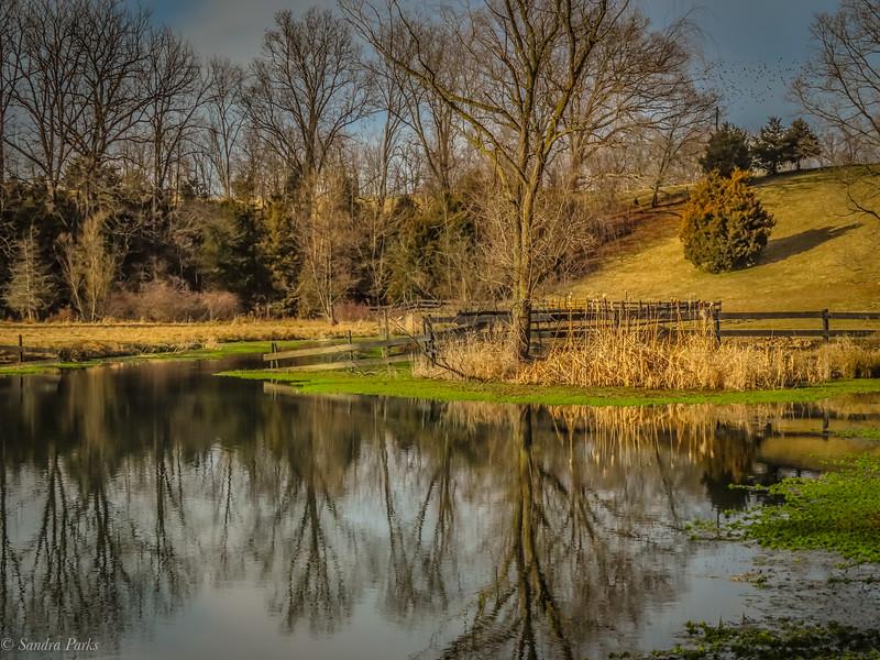 1-14-2021: Spring Creek