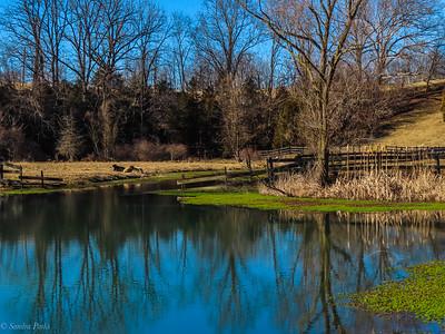 2-25-2021: Spring Creek