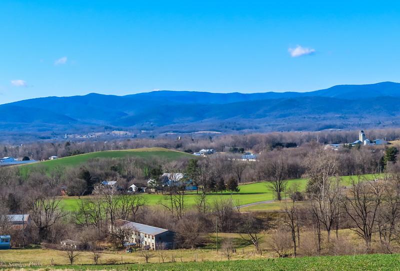 1-21-21: Blue skies, green fields
