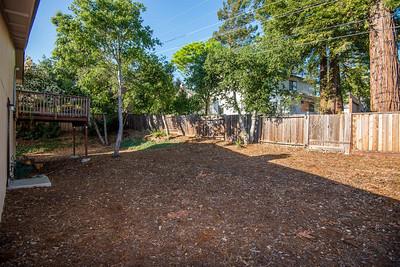 DSC_1488_backyard