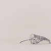 Smallest Leaf