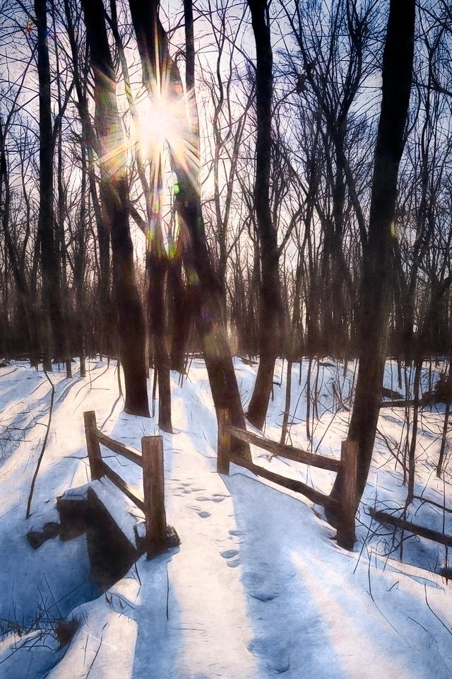 St Francis Seminary Woods landscape snow sun photograph