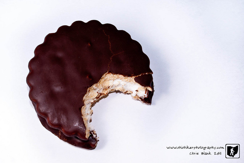We always have Little Debbie snacks around for the boys' lunches or just to snack on.  Tonight I saw this Marshmallow Pie laying out.  So I took a bite of it  and photographed the inner gooey texture.  Then, I had to eat the rest.  So much for the diet.