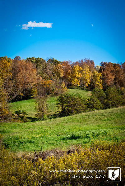 Spotted this meadow surrounded by the colors of fall this evening and could not help but stop and takes its photograph.