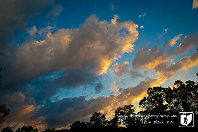 Day 314 of 365 - Amazing Skies