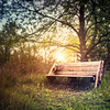 Sunset on a Wooden Bench