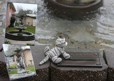 15/09 ~ 3/15/09 Kitty looking at the water fountin at church.