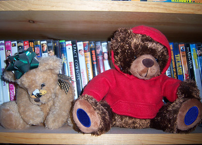 14/365 ~ 3/14/09 A Couple of my Bears sitting on the DVD shelf in the Living Room.